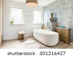 interior of a modern bathroom... | Shutterstock . vector #301216427