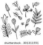 collection of branches and... | Shutterstock .eps vector #301311551