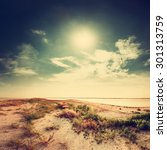 sandy beach and sun  vintage... | Shutterstock . vector #301313759