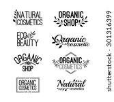 set of template for design... | Shutterstock .eps vector #301316399