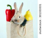 close up portrait bunny rabbit... | Shutterstock . vector #301333331