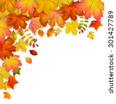 colorful autumn maple leaves... | Shutterstock .eps vector #301427789