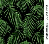 thin palm branches dark... | Shutterstock .eps vector #301457945