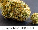 close up of medical marijuana... | Shutterstock . vector #301537871