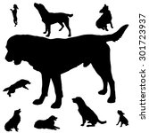 Stock vector black silhouette of dogs on white background 301723937