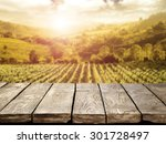 blurred background of vineyard... | Shutterstock . vector #301728497