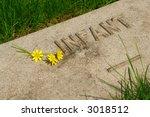 An Infant's Memorial Grave...