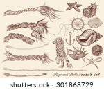 collection of hand drawn sea... | Shutterstock .eps vector #301868729