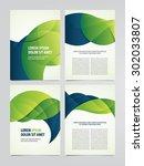 vector business brochure  flyer ... | Shutterstock .eps vector #302033807