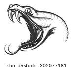 the head of snake. engraving... | Shutterstock .eps vector #302077181