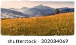 grass field in the mountains  ... | Shutterstock . vector #302084069