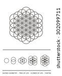 sacred geometry   tree of life  ... | Shutterstock .eps vector #302099711