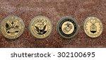 detail of symbols of usa... | Shutterstock . vector #302100695