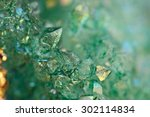 druse green crystals agate sio2 ... | Shutterstock . vector #302114834