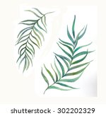 watercolor palm tree leaves set.... | Shutterstock . vector #302202329