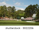 masters.  green at augusta | Shutterstock . vector #3022206
