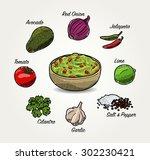 vector avocado guacamole... | Shutterstock .eps vector #302230421
