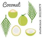 vector coconut icon | Shutterstock .eps vector #302230979
