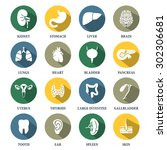 Vector Human Organs Icons Set
