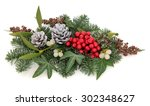 christmas and winter flora with ... | Shutterstock . vector #302348627