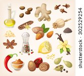 spices  condiments and herbs... | Shutterstock .eps vector #302529254