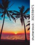 sunset tropical beach. ... | Shutterstock . vector #302558471