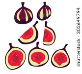 figs on a white background....   Shutterstock .eps vector #302649794