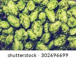 Fresh Green Hops On A Wooden...