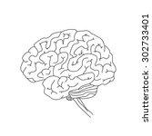 vector illustration of human... | Shutterstock .eps vector #302733401