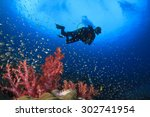 scuba diving on coral reef... | Shutterstock . vector #302741954