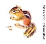 Watercolor Wild Animal Rodent...