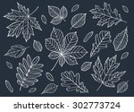 fall of the leaves. a big set... | Shutterstock . vector #302773724