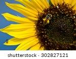 Bee Gathering Golden Pollen...