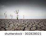 drought land | Shutterstock . vector #302828021
