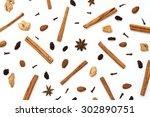 mulled wine ingredients ... | Shutterstock . vector #302890751