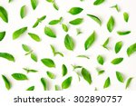 Fresh Mint Leaves Pattern  Top...