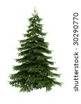 Spruce Tree Isolated On White...