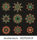 set of decorative rosettes...   Shutterstock .eps vector #302926919