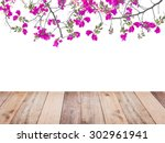 Pink Bougainvillea Flower And...
