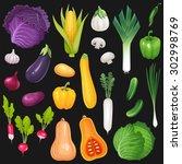 set of fresh vegetables. vector ... | Shutterstock .eps vector #302998769
