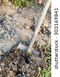 Small photo of digging of agrarian field by spade in summer