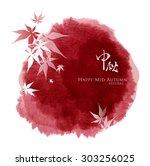 chinese lantern festival... | Shutterstock .eps vector #303256025