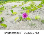 small tree and pink flower on... | Shutterstock . vector #303332765