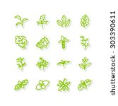 set of icons   a leafy... | Shutterstock .eps vector #303390611