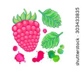 hand painted  raspberry... | Shutterstock . vector #303433835
