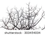 dead  trees abstract   | Shutterstock . vector #303454034