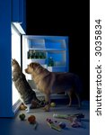 Stock photo cat and dog looking for meat in the refrigerator 3035834