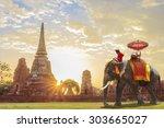 Elephant For Tourists On An...
