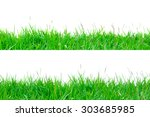 green grass isolate on white