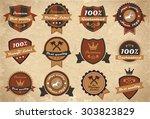 set of vintage labels and... | Shutterstock . vector #303823829